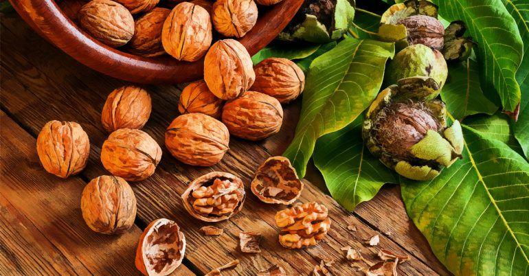 10 Неймовірно корисних властивостей волоських горіхів