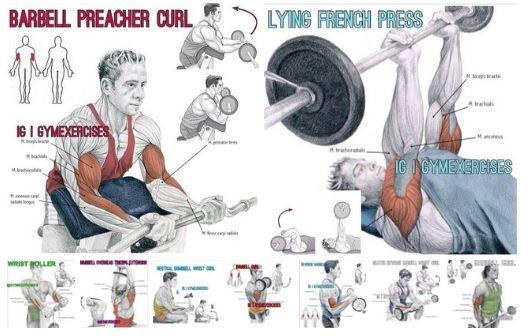 Вправи, в яких задіяно максимальну кількість м`язів рук!