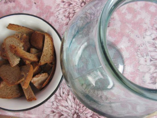 Як зробити закваску для квасу в домашніх умовах