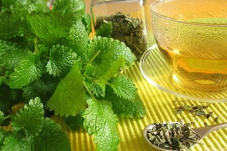 Яка користь і чи є шкода від вживання чаю з мелісою