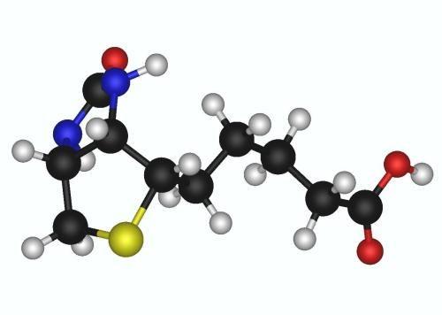 Біотин - 3х мірне зображення структурної формули