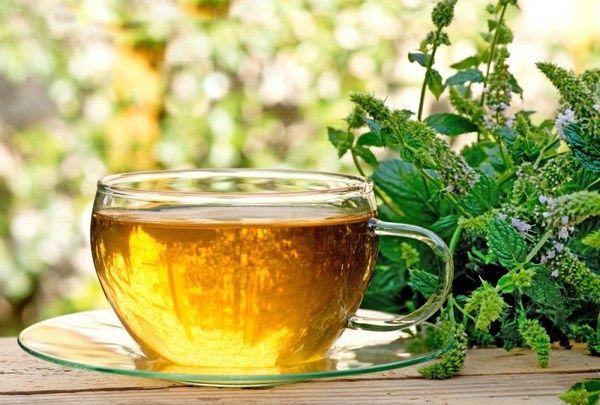 Чай з м`ятою і чебрецем