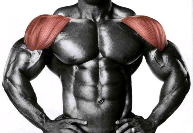 Кращі вправи для дельтоподібних м`язів!