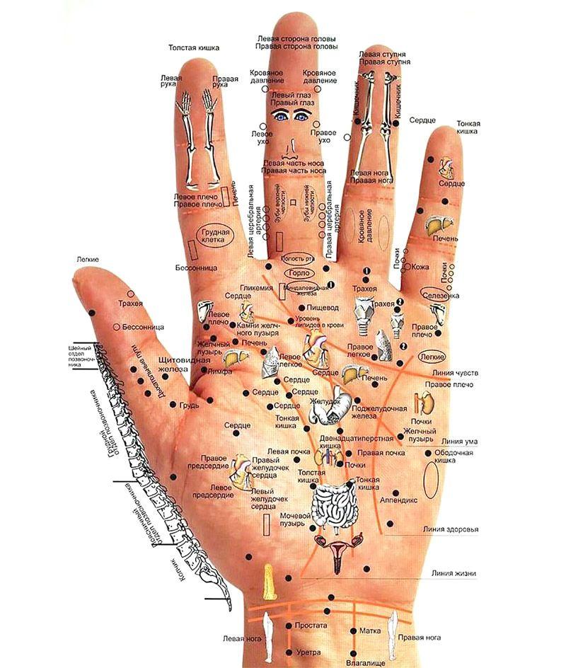 Визначаємо хвороби по руках