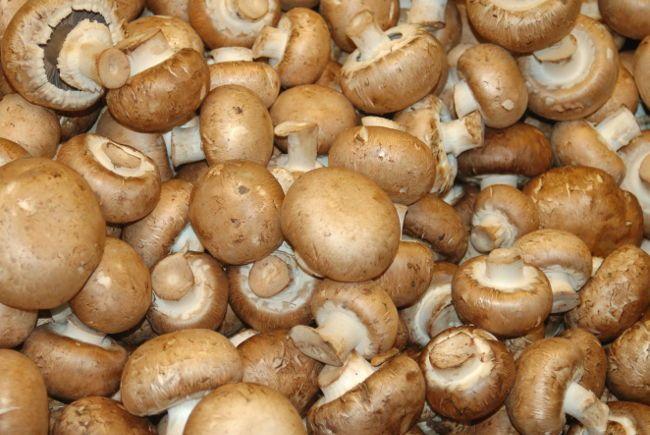 Корисні елементи і вітаміни в грибах