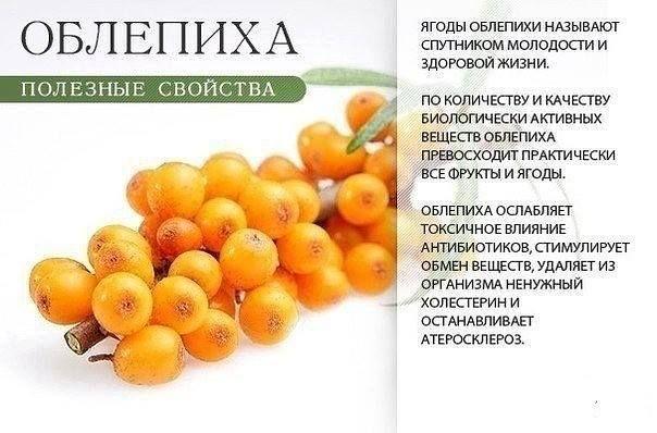 Користь помаранчевих дарів природи! Заряджайтеся енергією і вітамінами!