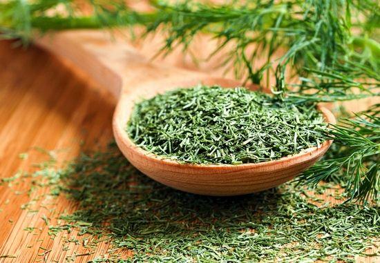 Кріп: калорійність свіжої, сушеної зелені на 100 грам