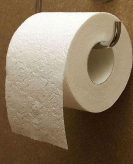 Після цього ніколи більше не будеш класти туалетний папір на сидінні унітазу. Ніколи.