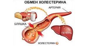 Зниження холестерину народними засобами