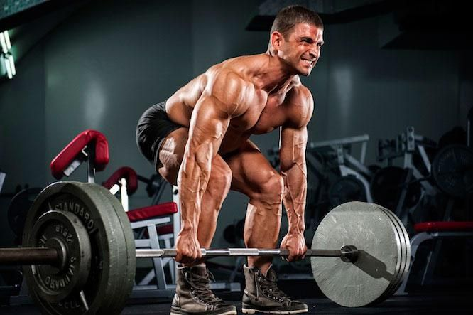 Вправи на всі групи м`язів