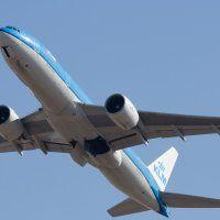 Видавець звинуватив американські авіакомпанії в загибелі 193-кілограмової дружини