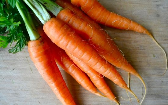 Шкода морквини для організму людини. Чи шкідливо їсти її багато?