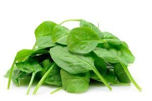 Загадковий шпинат - вітамінна зелень з користю для щоденного раціону