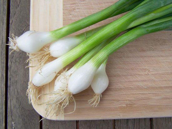 Зелена цибуля: користь для організму